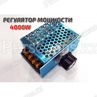 Диммер 4кВт 220Вольт